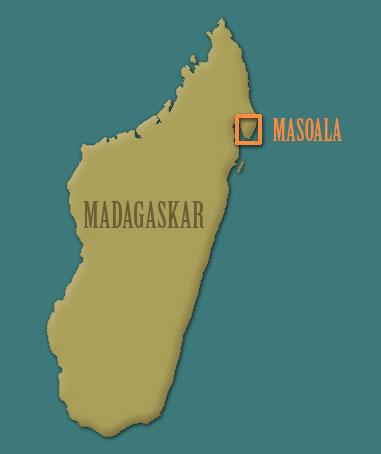 Madagaskar Karte.Unknown Spider Megaloremmius Leo